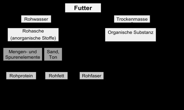 Rohnährstoffgruppen