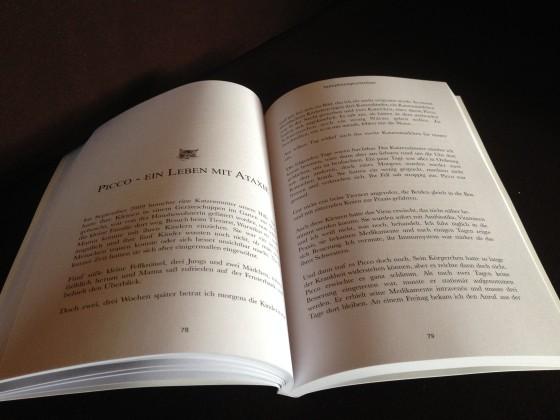 Buch_innen