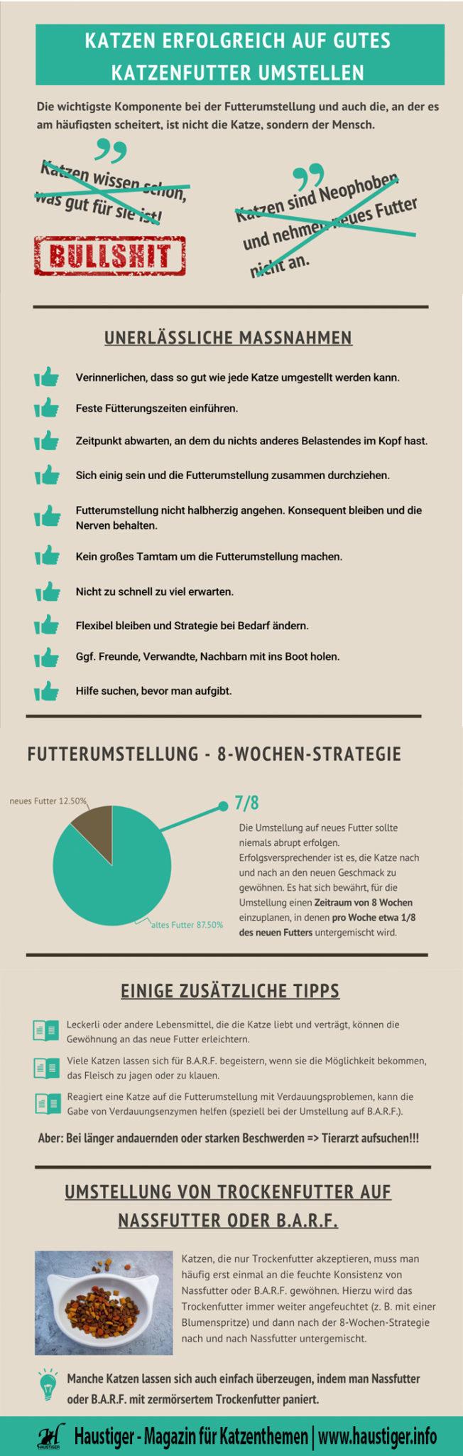 Futterwechsel Katze Infografik