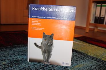 Katzenkrankheiten