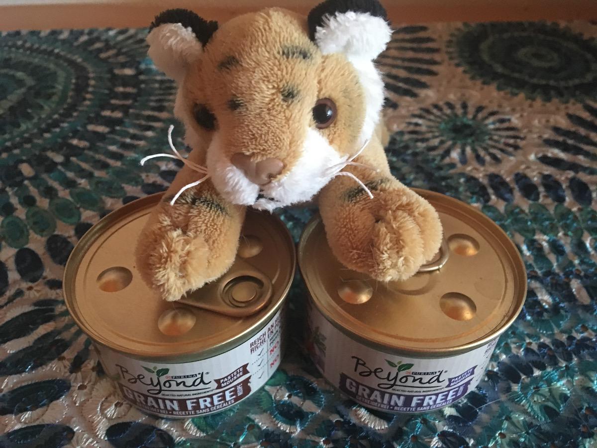 Getreidefreies Katzenfutter von Purina