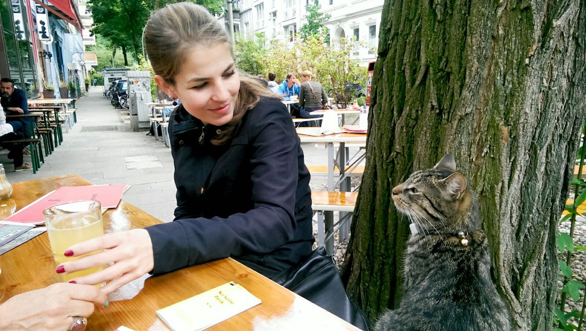 Mr. Mau von 2chaoscats